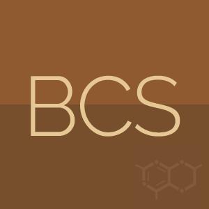 ico_bcs